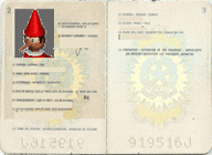 passaporto-bambino
