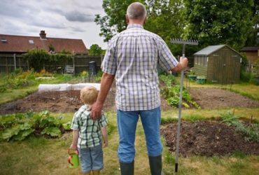 Diritti e doveri dei Nonni