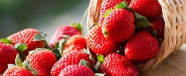 Maggio è il mese delle fragole…la spesa di Maggio