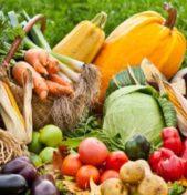 La spesa di Novembre: il mese della Zucca e della Barbabietola